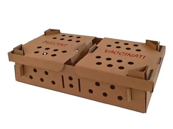 Imballi-personalizzati-modena