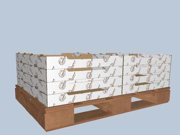 Progettazione-prototipi-scatole-modena